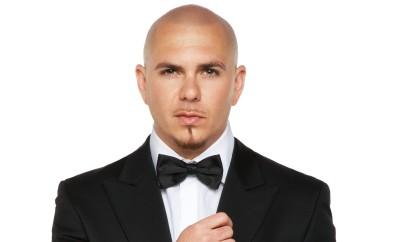 IP_Pitbull